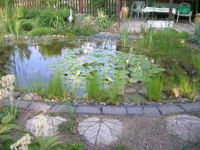 gartengeli - gartenteich, Gartenarbeit ideen