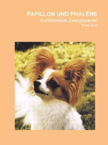 Kontinentale Zwergspaniel - Papillon & Phalene
