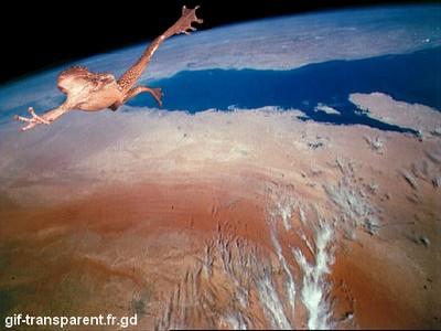 grenouille-fusée quittant la terre pour son voyage inter-stellaire