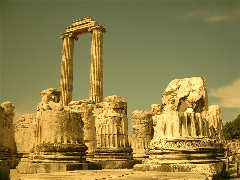 Didim (Apollon) Tapınağı, Temple of Didim (Apollon)
