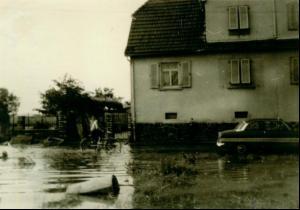 Überschwemmte Wiese mit Haus im Hintergrund