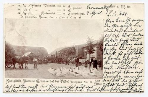 Historisches Foto des Hofes mit Tieren