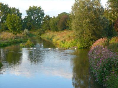 Mündung zweier Flüsse