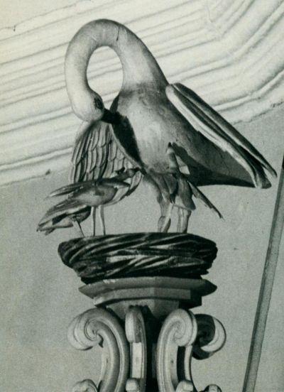 Foto des Storches (Pelikan) auf der Kanzel