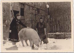 Foto zweier Frauen mit einem Schwein