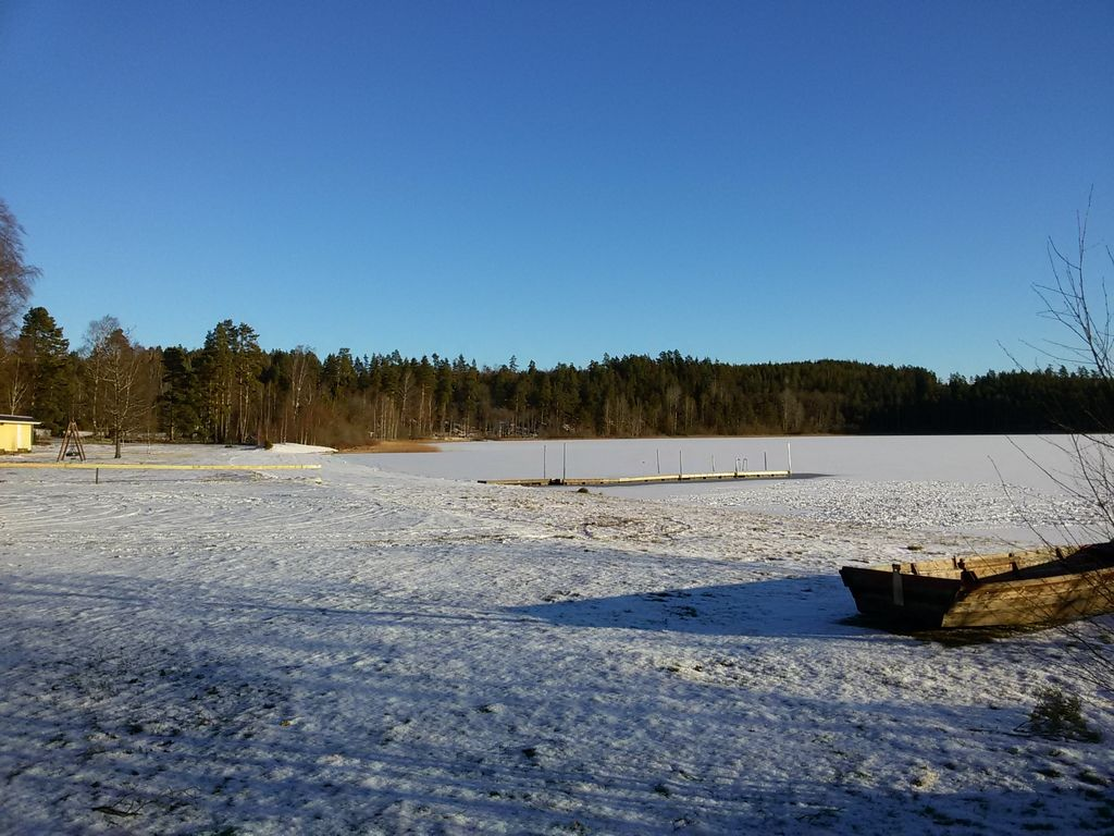 Winter 2018-2019
