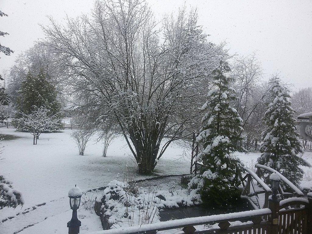 Winter 2016 - 2017