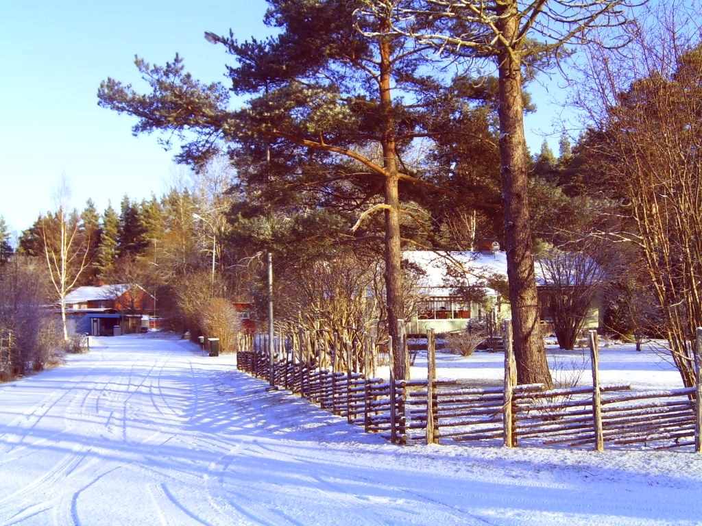 Winter 2008-2009 Rosenfors, Småland