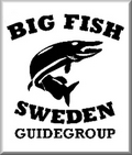 Big Fish Sweden
