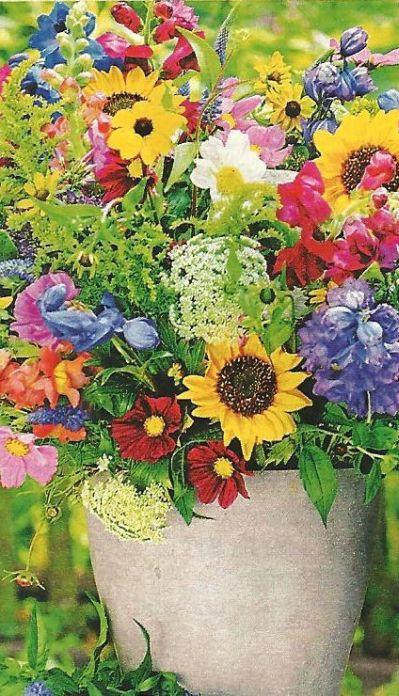 Des Sommers Blumenpracht !
