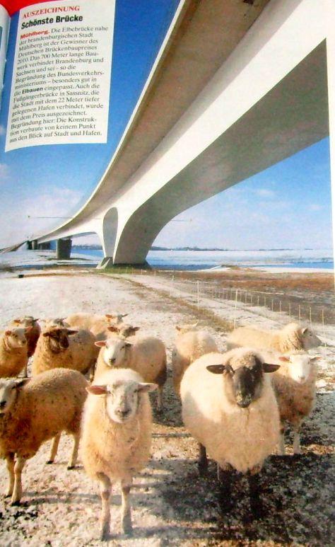 Mühlberg: Elbebrücke