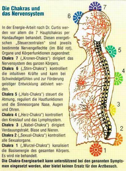 Die Chakras und das Nervensystem