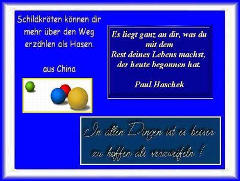 Paul Haschek