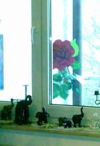 Aus unserer Wohnung - Sicht auf unserem Balkon :-)