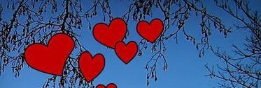 Ein Herz und Eine Seele