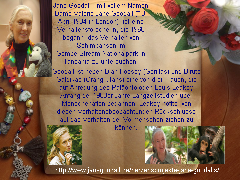 Jane Goodall England