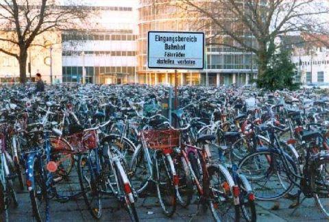 Fahrräder - Fahrrad_Wald