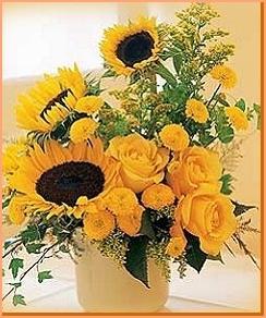 Sonnenblumen und andere gemischt. Herbstzauber !