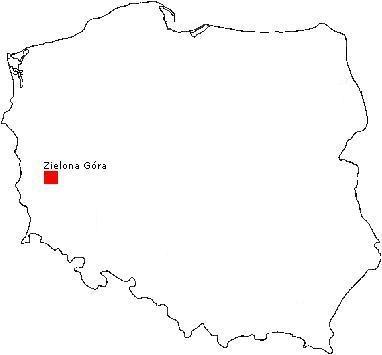 Hodowla Border Collie - Rewolucja, lokalizacja - Zielona Góra