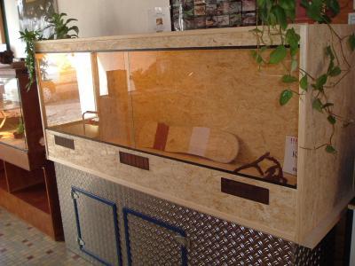 ihre nr 1 im holz terrarienbau terrarien. Black Bedroom Furniture Sets. Home Design Ideas