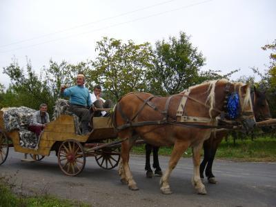Calinesti - Kutsche mit Sonntagsausflüglern - die Jungs sind gut beieinander