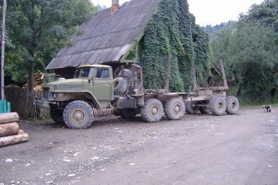 der typische Holztransporter