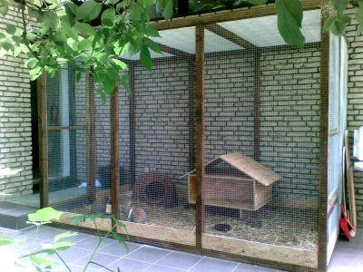 info kaninchen bildgalerie ah. Black Bedroom Furniture Sets. Home Design Ideas