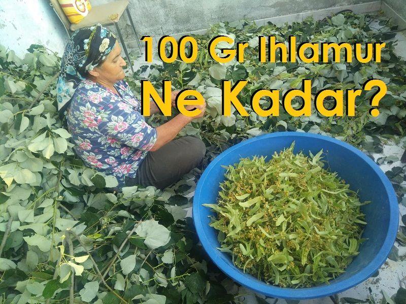 100 Gr Ihlamur Ne Kadar?
