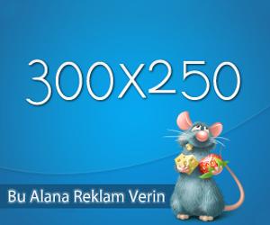 300x250 Reklam ver