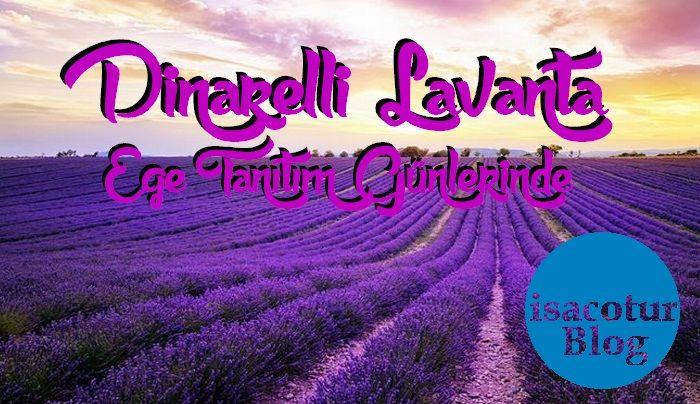 Dinarelli Lavanta Dinar Kaymakamlığı