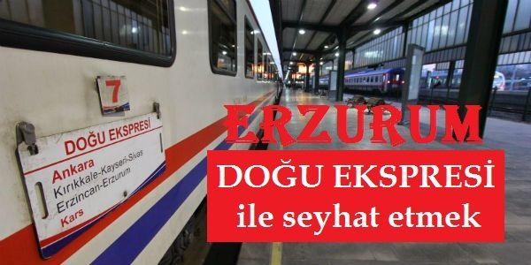 Erzurum Doğu Ekspres Treni