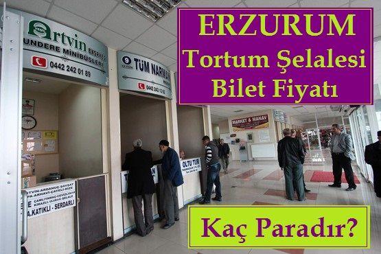 Erzurum Tortum Şelalesine Bilet Fiyatı Nedir
