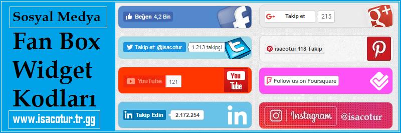 Sosyal Medya Fan Box Widget Kodları