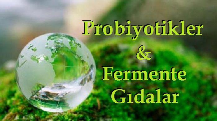 Probiyotikler veFermente Gıdalar