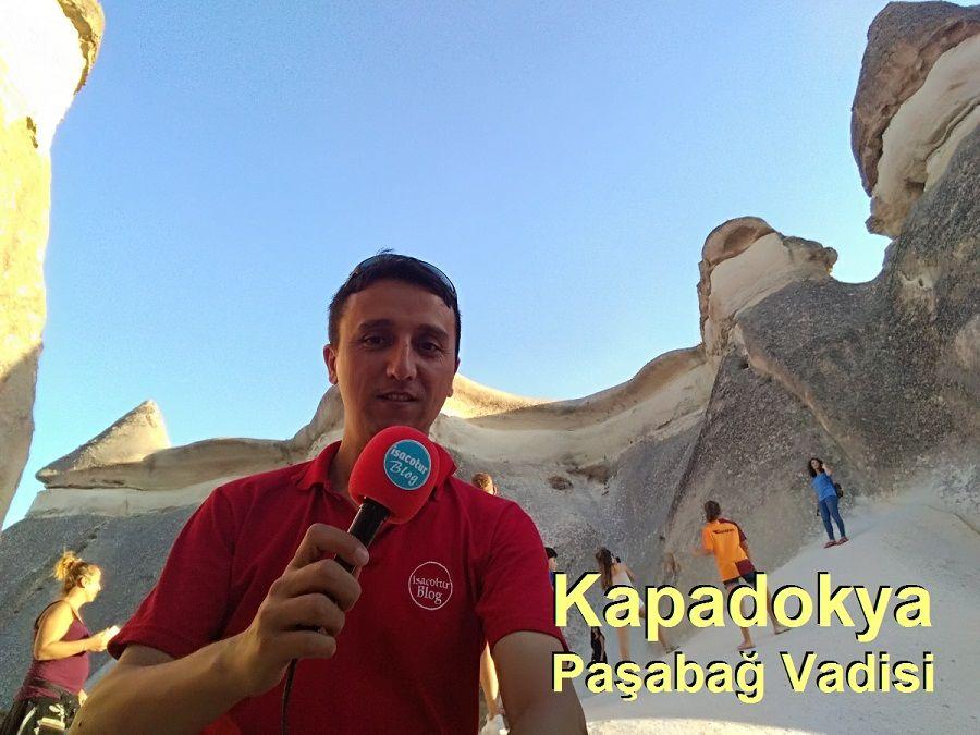 Kapadokya Paşabağları Vadisi (Rahipler Vadisi) Peri Bacaları