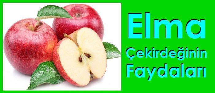 Elma Çekirdeğinin Faydaları