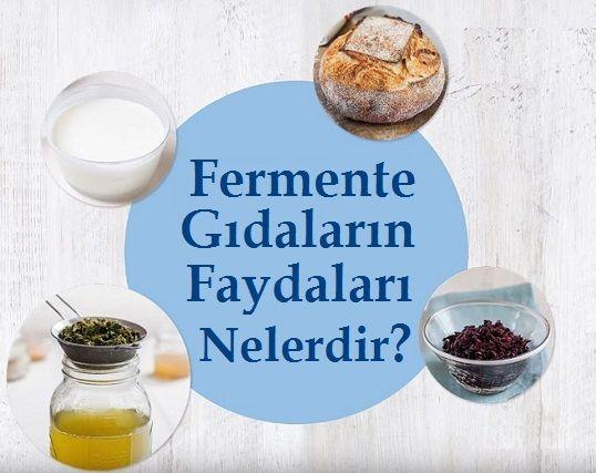 Fermente Gıdaların Faydaları Nelerdir