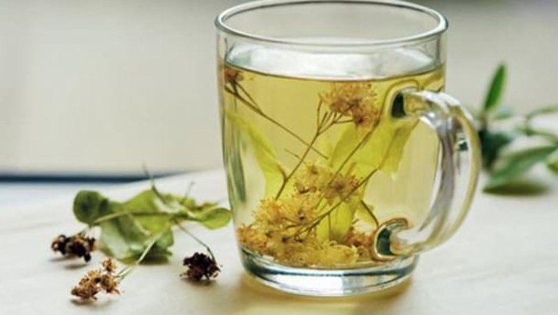 Ihlamur Çayının Faydaları Nelerdir? Ihlamur Neye İyi Gelir Nasıl Demlenir?