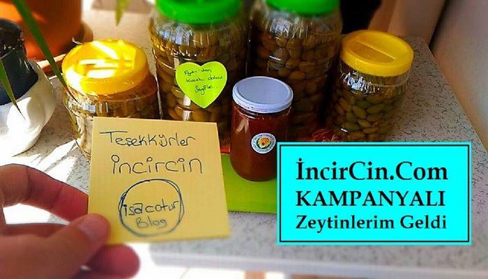 İncirCin.Com Kampanyalı Zeytinlerim Geldi