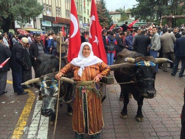 Atatürk ve İstiklâl Yolu Yürüyüşü