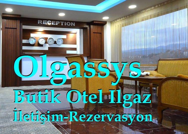 Olgassys Butik Otel Ilgaz İletişim