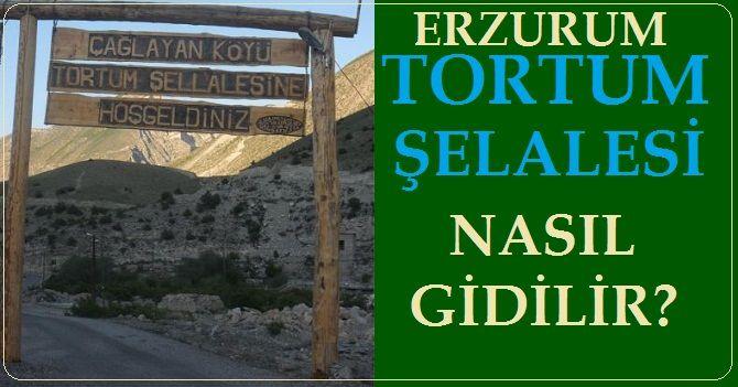 Erzurum Tortum Şelalesine Nasıl Gidilir