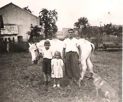 Das Schimmelpony war der Liebling der Kinder.