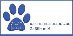 JOSCHI-THE-BULLDOG.DE - Gefällt mir!  -  Facebook-Fanseite