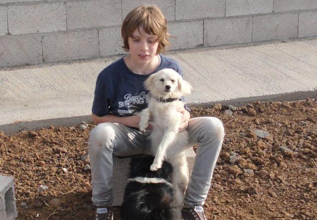 Leo mit Mali