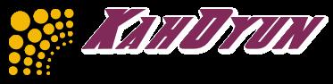 kahoyun logo