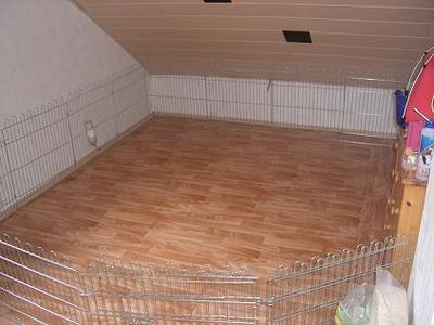 kaninchenhomepage innenhaltung. Black Bedroom Furniture Sets. Home Design Ideas