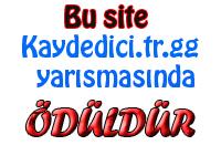 Kaydedici.tr.gg