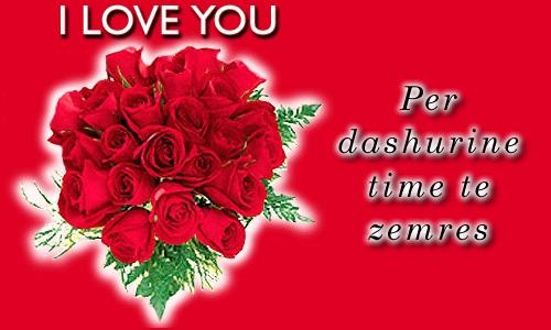 Poezi Shqip
