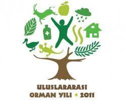 ULUSLARARASI ORMAN YILI 2011